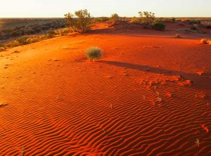 101._Sand_dune