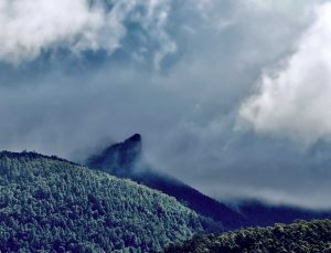 Cathedral Rock, Wellington Range. Tasmania